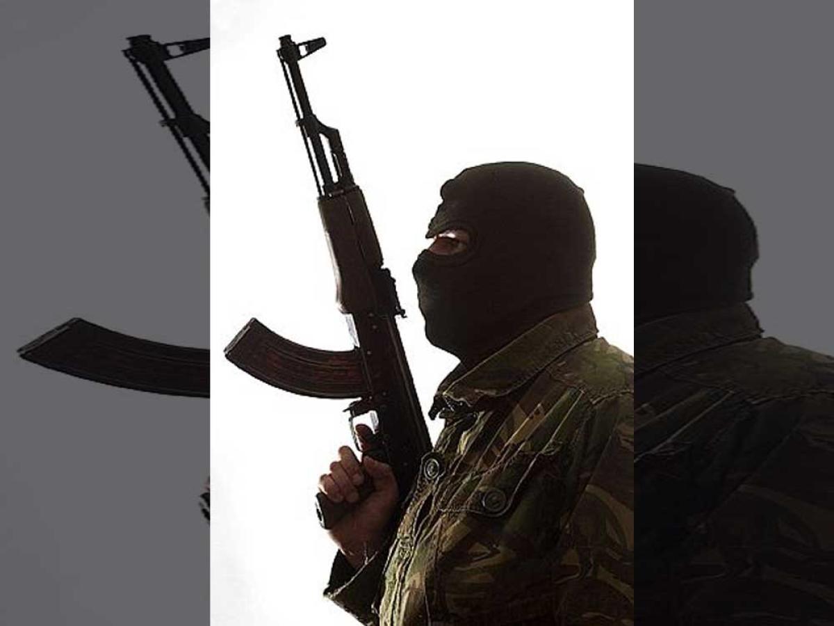 'Pak needs to be told US won't tolerate terrorist safe heavens'