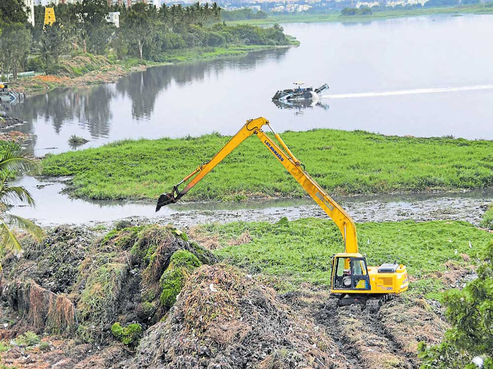 Bellandur lake: NGT raps state govt, calls its report misleading
