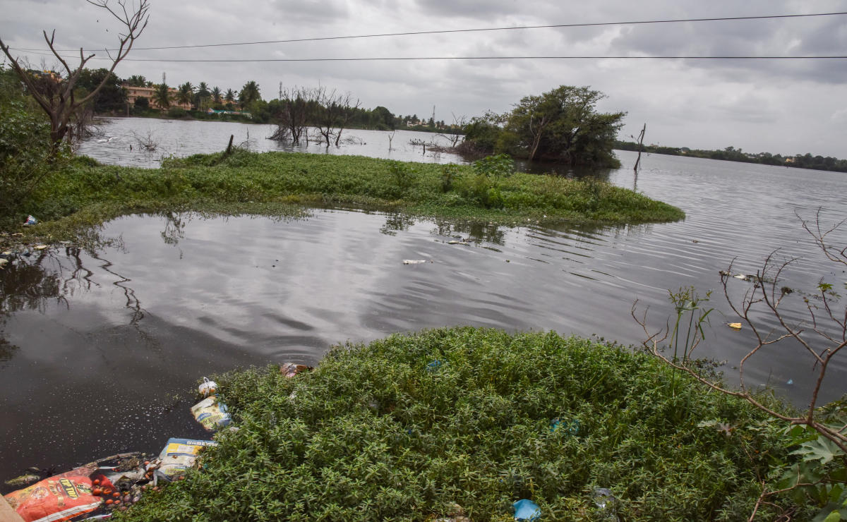 Sewage water been let into the Chikkabanavara Lake at Abbigere. (DH PhotoS/S K Dinesh)