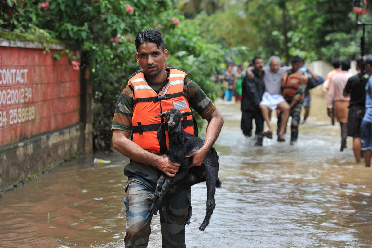 Rescue personnel carry animals and elderly people to safety from flood waters during a rescue operation at Mala village in Thrissur District, in the south Indian state of Kerala. (AFP photo)