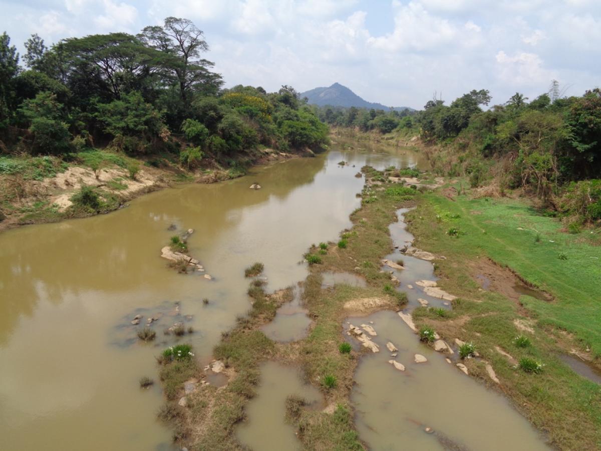 The shallow stretch of Harangi river at Koodige village near Kushalnagar.