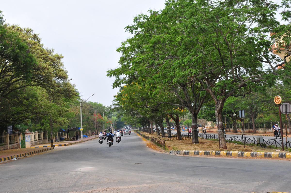 A view of Krishnaraja Boulevard, where the Open Street Festival is scheduled for Oct 13.
