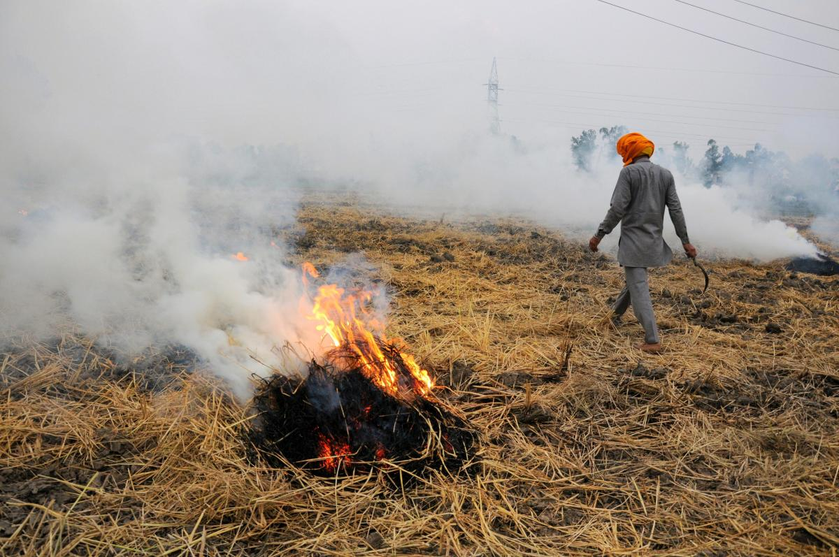 Smoke rises as a farmer burns paddy stubbles at a village on the outskirts of Amritsar, despite a ban, before growing the next crop. PTI Photo