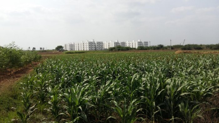 Amaravati region not suitable for capital. (DH file Photo)