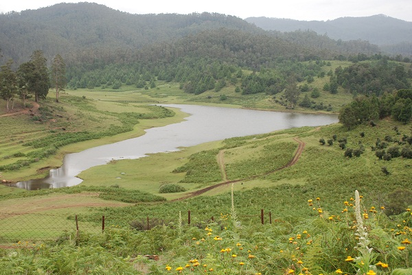 Manavannoor, a stunning hamlet with a lake and verdant meadows