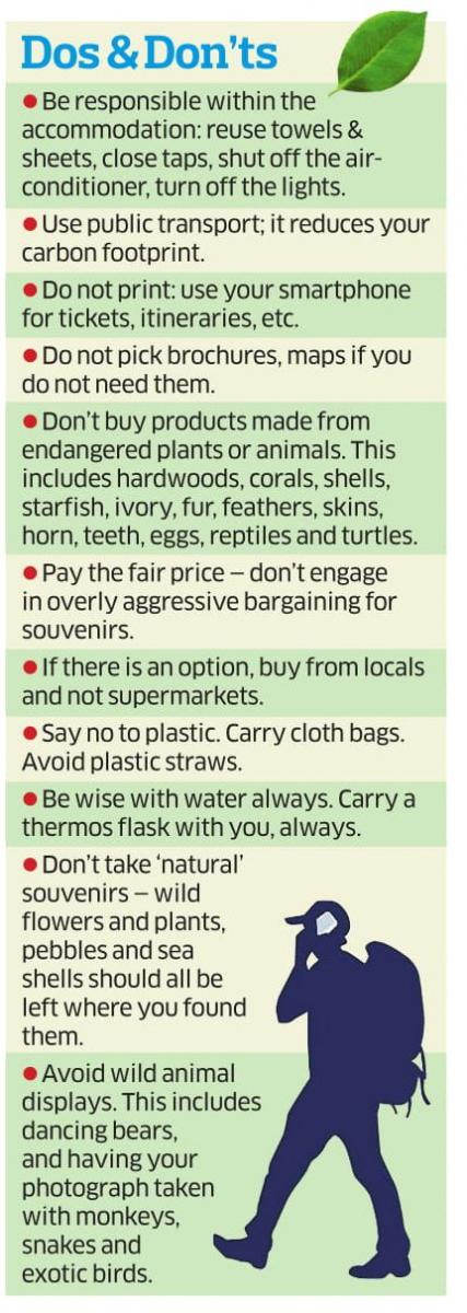 Eco-friendly travelling tips