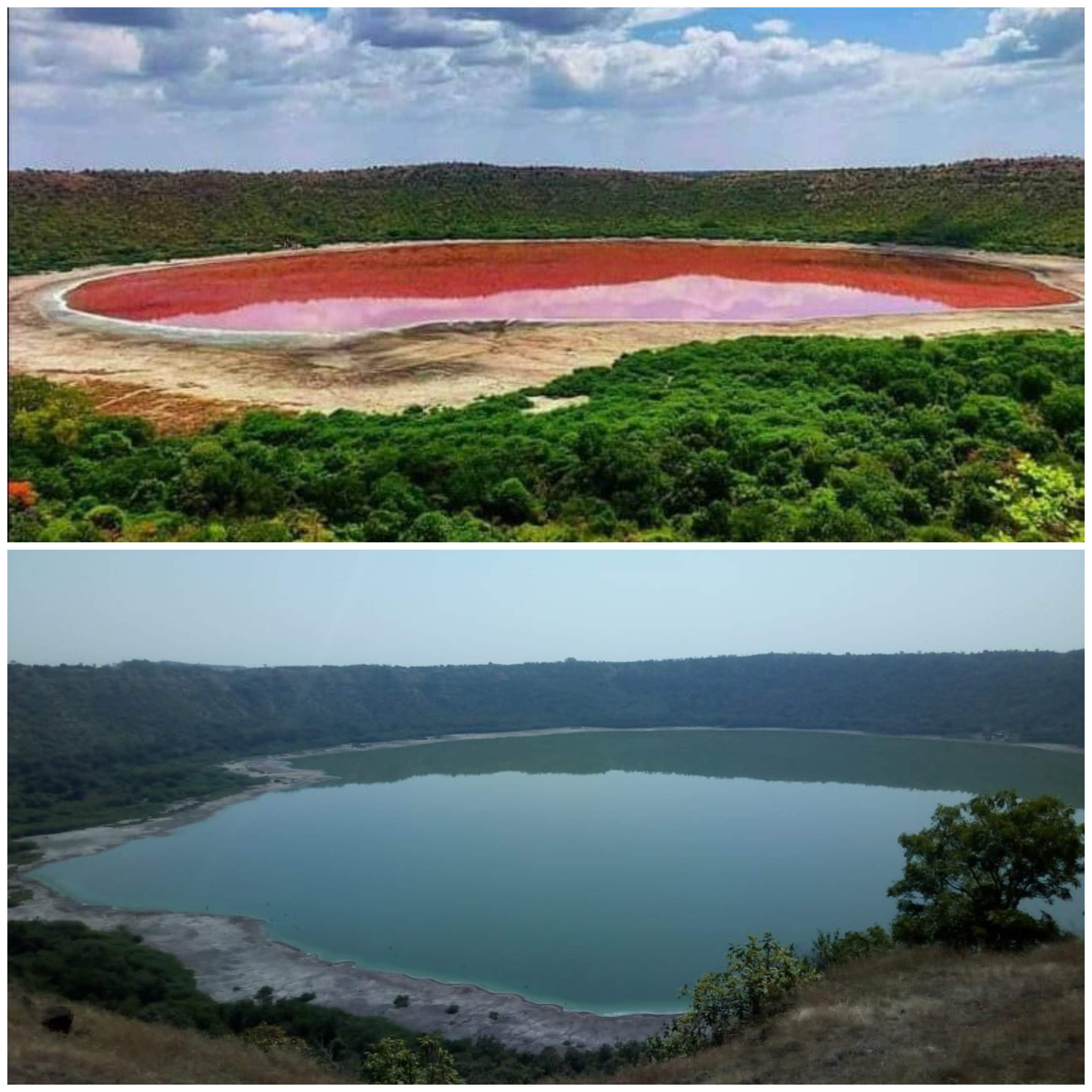 Lonar Lake in Maharashtra mysteriously turns pink, leaves ...