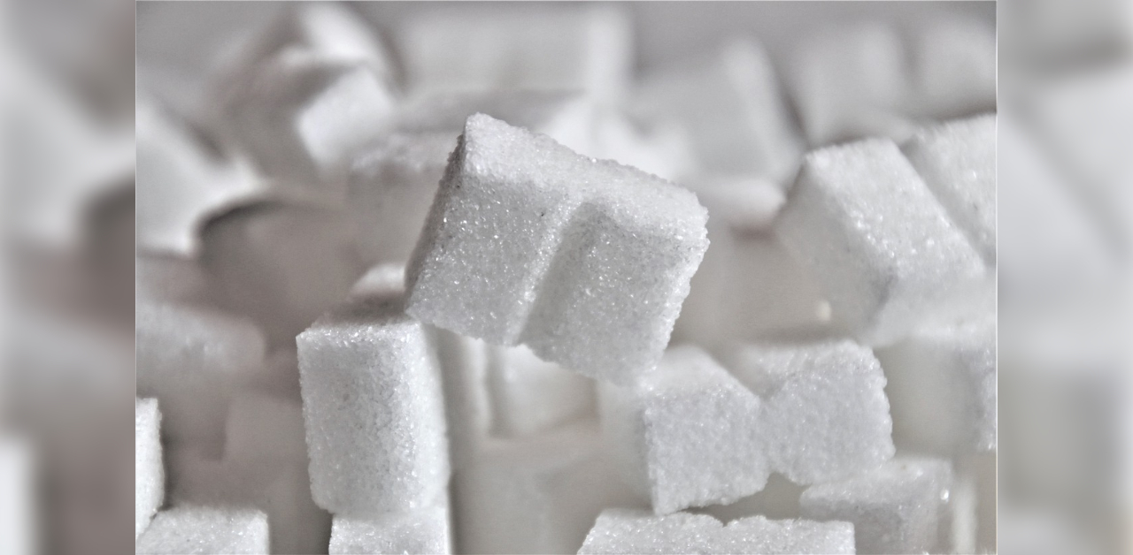 Karnataka: Cabinet panel not for 40-year lease of MySugar