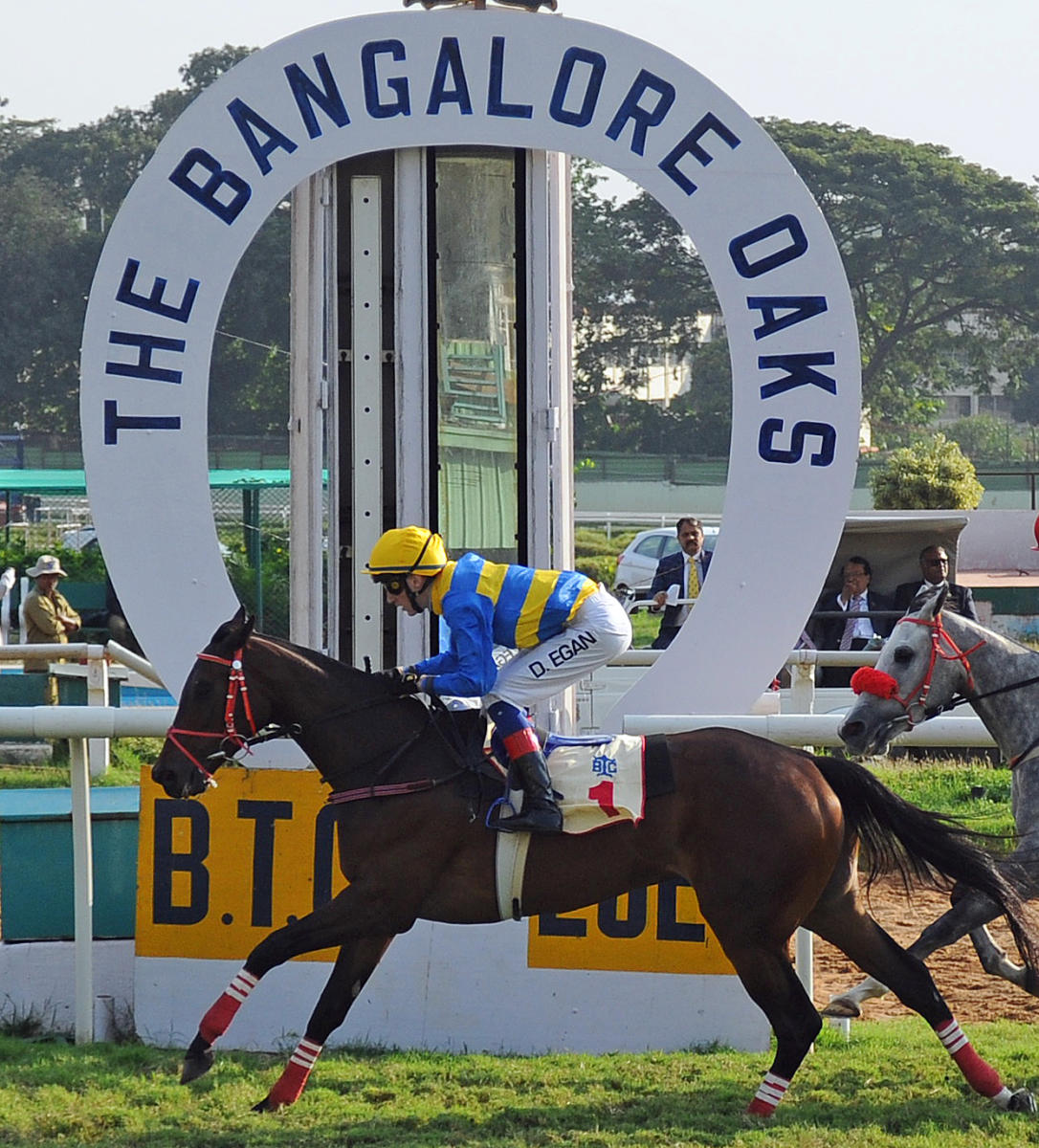Bangalore turf club off course betting centre euromillions bettingadvice