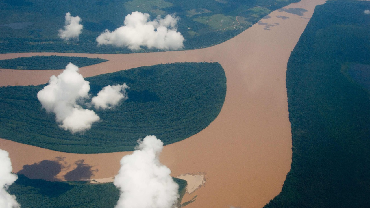 A meteor that killed dinosaurs ended up creating the Amazon rainforest, a study says
