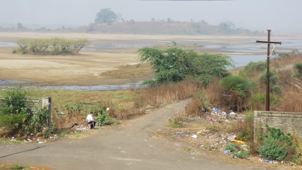 NGT steps in to save Panje wetland, asks CIDCO to clear choked water inlets