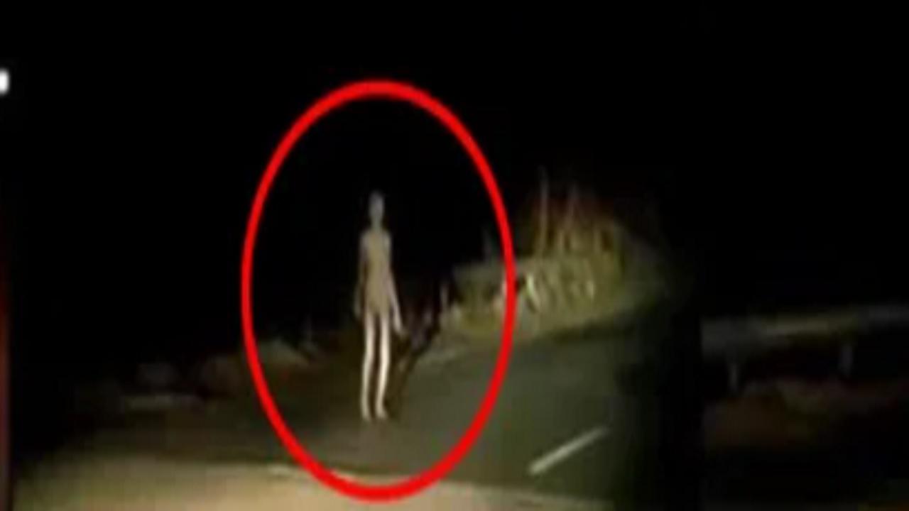 Alien di India
