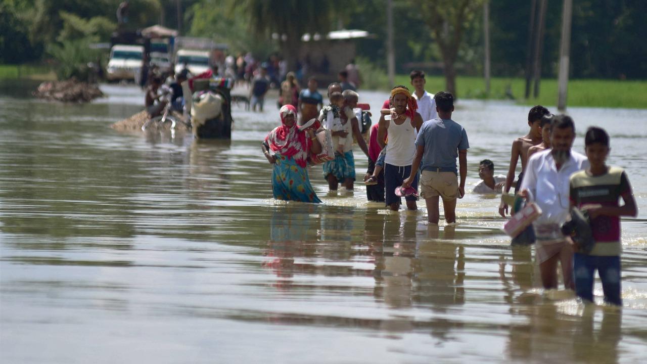 5,000 sq km water bodies identified to divert floodwater in Assam