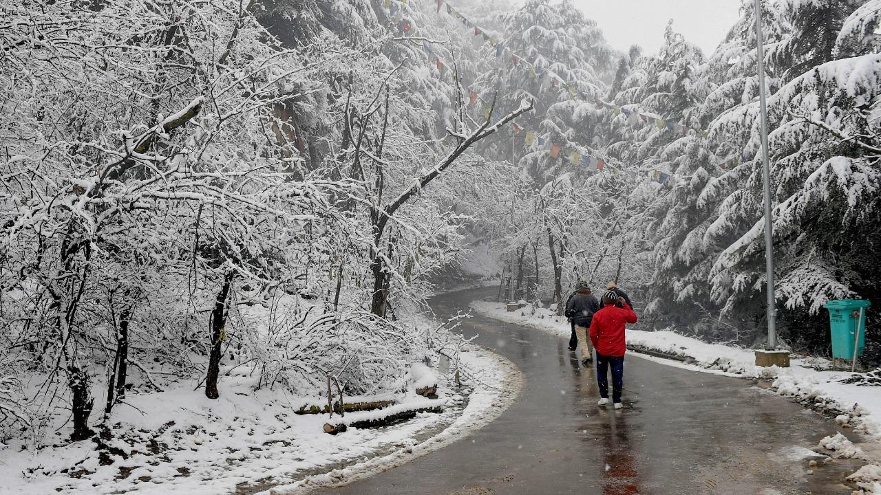 Kashmir remains safe destination for foreign tourists, NCRB data shows