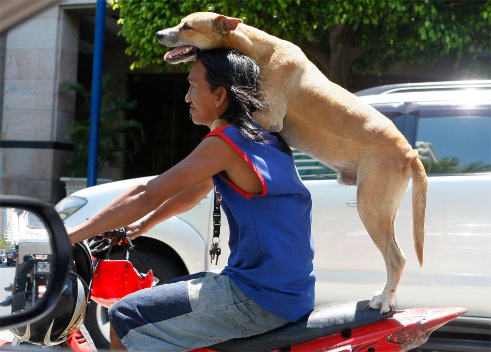 https://www deccanherald com/photos/2012/05/01/2012-05-01