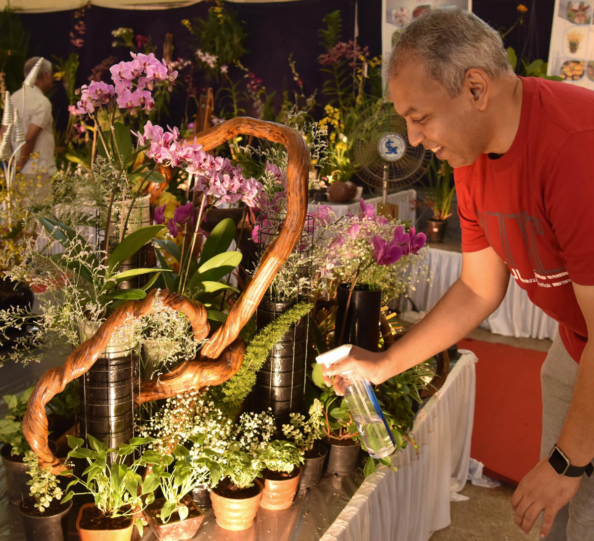 A visitor at the Orchid Show organised by the Orchid Society of Karnataka at Lalbagh on Sunday.