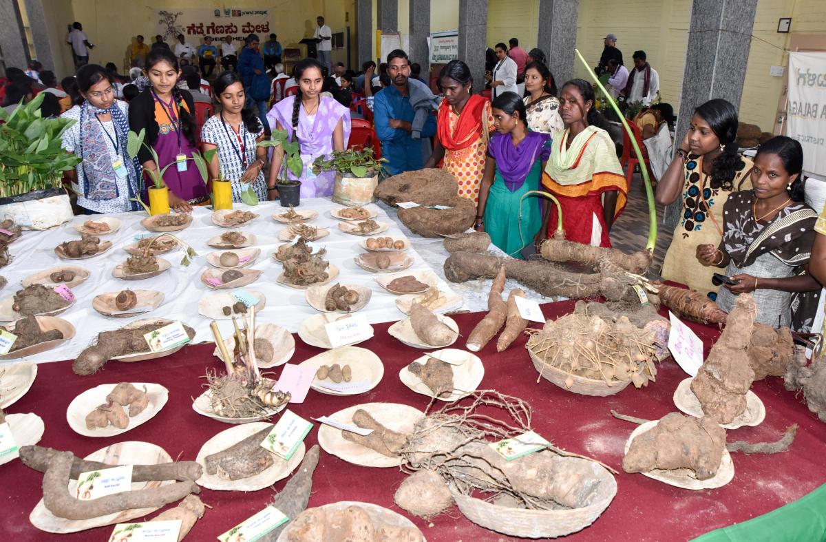 Natures Hidden Treasure Deccan Herald