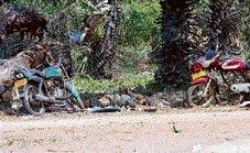 Rajapaksa says Tigers 'defeated'