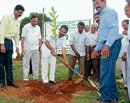 'Create awareness on afforestation'
