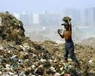 Delhi is top solid waste producer: Study