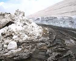 From a receding glacier, an SOS to the world