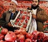 Buy Afghani almonds, pomegranates at trade fair