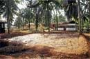 Scenes from a typical Tulu village