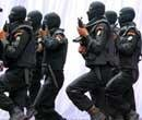 NSG hub, commando unit in every state: PC