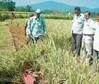 Demonstration on paddy crop cutting machine held