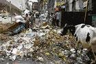 Rubbish mafia can't halt tender: Govt