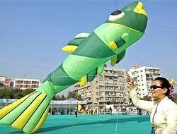 Hues of 34 nations dot Ahmedabad skies in kite festival