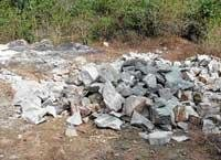 Forest Dept into illegal quarrying