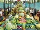 Horticulture show opens