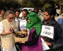 Ramesh rebuts Pawar on introducing Bt brinjal in mkt