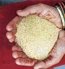 Govt to provide subsidised rice, wheat