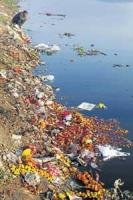 Scientists find sin-cleansing Ganga to be infectious