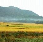 Rs 60 lakh for development of Male Malleshwara Betta