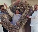 Mayawati defiant, BSP says only currency garlands for her