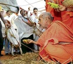 Anti-cow slaughter Bill opposed
