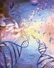 Over 2,000 missing DNA sequences found