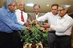 'Industries to plant 1 cr saplings'