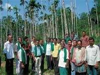 Govt failed to save farmers plantations: KRRS