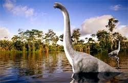 Dinosaurs 'grew into long-necked giants to gulp food'