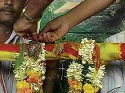 Frogs married to invoke rain gods
