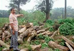 Start work on cultural complex in Madikeri, officials told