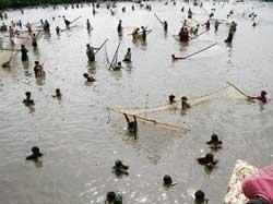 Kinnara celebrates fishing festival