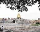 Lalbagh to lose trees for a 'Sentosa' look