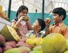 Time 'ripe' to buy mangoes