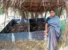 Parinathi Bringing smiles on the face of farmers in Kadur villages
