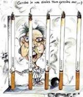 Budding cartoonists imbibe basics